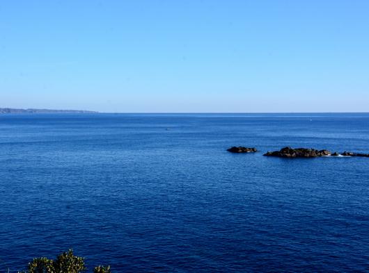 1-19.01.25 樫野崎から太平洋.jpg