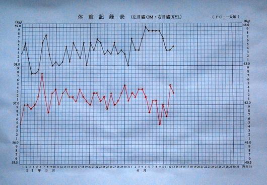 1-19.04.16 体重記録表.jpg