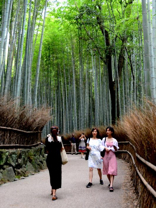 1-19.07.18 嵐山散策-10.jpg